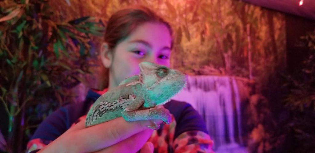 Kid holding a chameleon in Glow Golf Monroe