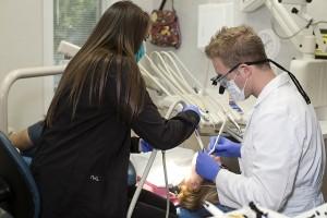 dentist monroe nc low cost